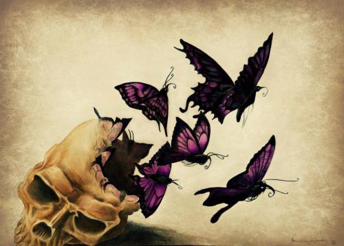 Психология рисунка бабочка. Бабочка – символ и тотем