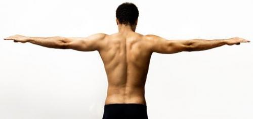Гимнастика для плечевого пояса. Как правильно выполнять упражнения