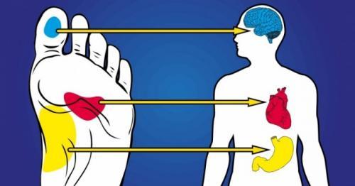Болит точка на стопе. 21точка настопах, массаж которых улучшает самочувствие