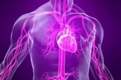 Курение и панические атаки. Как курение влияет на сердце и сосуды