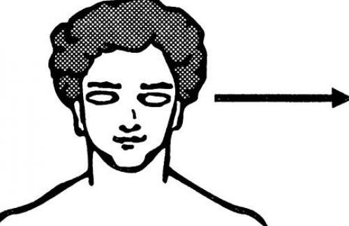Тест визуал. аудиал. кинестетик. дигитал. густатор. олфактор. Что значит аудиал, визуал, кинестетик, дигитал?
