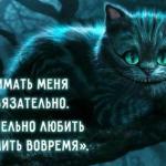 28 мудростей чеширского кота.