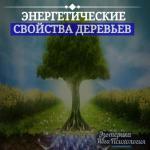 Энергетические свойства деревьев.
