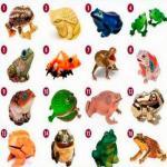 Интересный тест про лягушку - символ богатства.