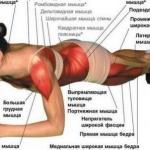 Планка является одним из самых популярных и эффективных упражнений для пресса по всему миру.