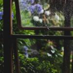Дождь как нежданная весть обрушился.