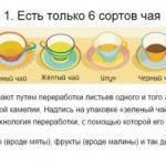 Люди по всему миру любят чай и пьют его каждый день: утром - чтобы взбодриться; вечером - чтобы согреться; днем - на работе, в гостях или в кафе.